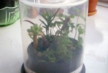 Creative Recycled Projects