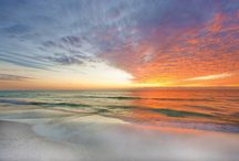The Siesta Key and Sarasota Community / This board is for anyone who wants to pin about Siesta Key and the Sarasota area with us! Let us know in a comment on a pin on this board that you want to pin, and we'll invite you. / by Siesta Key Bungalows