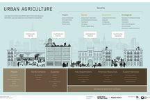 Urban farming / Urban green and agriculture