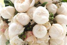 Wedding Peonies / Posies, bridal bouquets