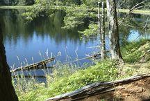 Denman Island Lakes