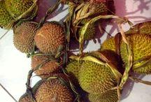 Fruits/buah