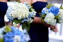 Blue / Blue Inspiration