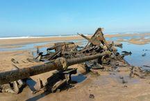 Shipwrecks/Lighthouses