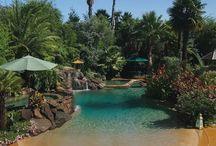 insane pools