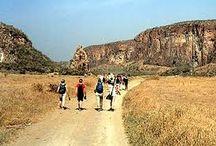 kenya trekking safaris / Adventuring in the wilderness makes Kenya safari  complete!