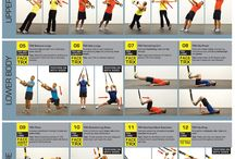 TRX Excercise / by Myrtle Hiles