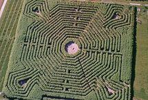 SCENE • Maze
