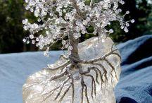Korálkové stromy a rostliny