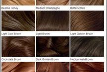 Hair Color Charts