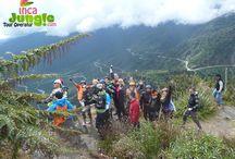 Inca Jungle Peru / Inca Jungle, Adventure Specialist is a local trustable trekking & Travel agency in Cusco Peru, who arrange all holiday related service like Inca Jungle Trail to Machu Picchu.