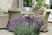Sedenie v záhrade