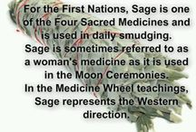 {Earth Medicine}