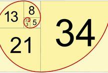fibonacci_ / een rekenkundige reeks die je onverwacht vaak tegen komt in de natuur.