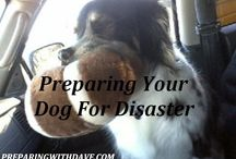 Be Prepared / Emergency preparedness