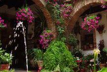 façade en fleurs