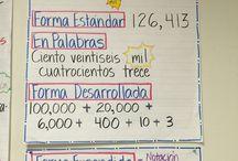 2nd grade bilingual