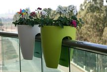 Balcony Dreams / One day, I will have a garden, patio, roof-top garden, that is like this.  / by Eleni