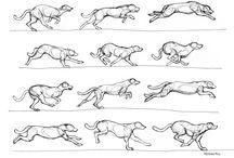 Tekeningen / Ideeën voor tekeningen  En hoe je moet tekenen