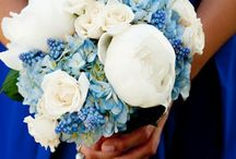 Flowers / Flowers for wedding