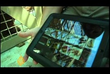 AAC Augmentative and Alternative Communication / by Easybee