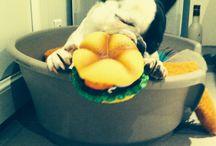 Casper / Casper mange son hamburger