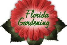 Florida Style Gardening / by Willow