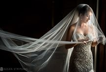 Photography Masters - Susan Stripling