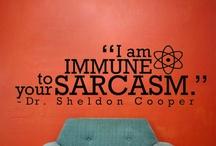 The Big Bang Theory (Bazinga!!!)