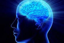 memória, neurolinguística