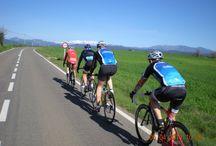 Cykelresor / Med racer på landsväg