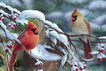 Πουλάκια στο χιονιά