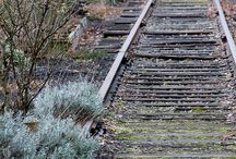Tracks of time / Abandoned train tracks, statins, trains, railroad teaks, cabooses, cars, hoboes, old train and rail related paraphernalia. Repurposed trains, historical t trains.   / by Beverly