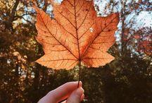 Autumn cozy mood