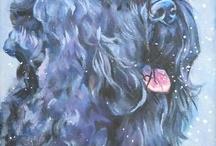 Black Russian Terriers