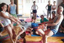 Assists Yoga & Teaching