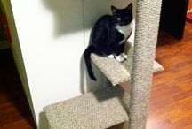 Sharp Lookin' Cat Trees