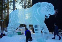 Ice sculptures  / by Lorraine Hanks