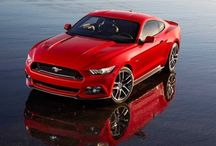 Ford Mustang 2015 / 2015 Ford Mustang photo gallery.