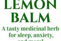 Herbs & Healing