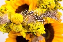 {Yellow Weddings}