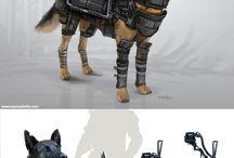 Project: Animal Armor