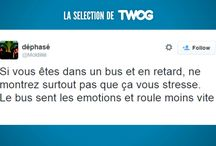 Tweets et posts