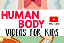 Biology: Human Body / Home School: Grade 6; Digestive,Respiratory, Skeleton, Muscular, Circulatory & Nervous Systems