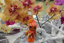 цветы / цветы и игрушки