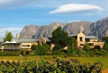 CT Wine Farms