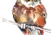 Bilder fåglar