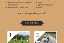 East Devon Riding Academy, horse infographics and posters. / Offering ethical horse riding opportunities and good horsemanship in beautiful East Devon. Excellent safety record and working to a very high standard of horse welfare. Lessons available for adults and children, Pony Mornings,  Pony Playgroup and adult clinics for all abilities with visiting experts in the field of equine behaviour and training.  www.ridingacademy.co.uk