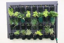 vertical garden and upside down planters  / ideas for how to create vertical gardens and upside down planters