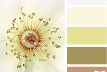 Decor | Design | Colors / by Debbie McBee